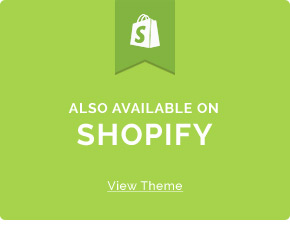 everything shopify themes