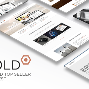 Download Enfold - Responsive Multi-Purpose Theme