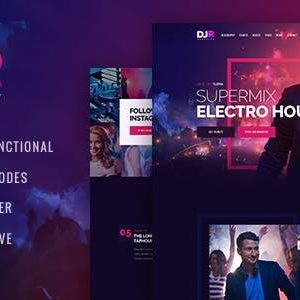 Download DJ Rainflow | A Music Band & Musician WordPress Theme